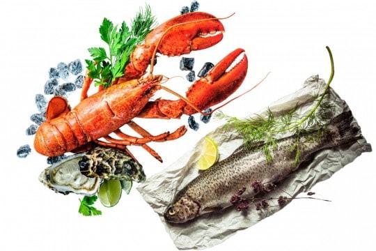 fisk&skaldjur